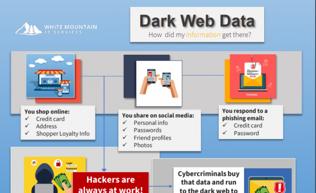 Dark Web Overview