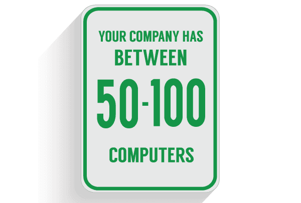 Virtual CIO Service for 50-100 computers